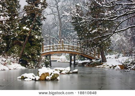 Japanese Garden in winter time, Poland