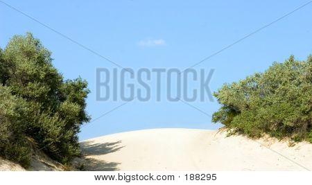 Dune, Barkhan