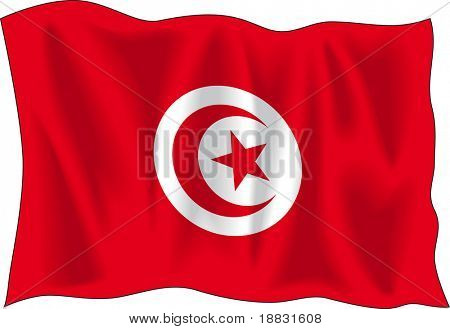 Waving flag of Tunisia isolated on white