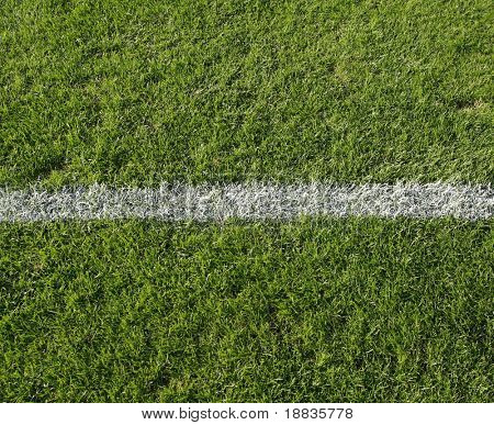 grass with white line