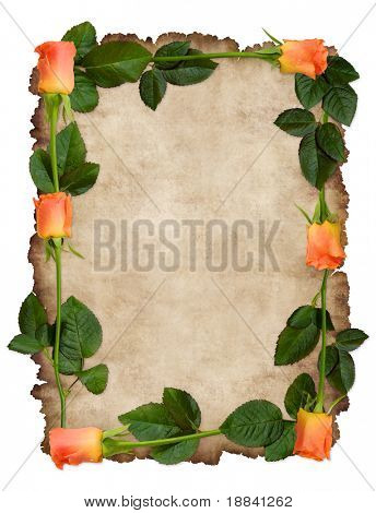 Romantic love letter on a parchement framed with red roses Conceptual background isolated on white