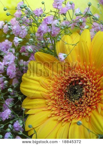 photograph of an arrangement with a big yellow gerbera daisy surrounded by pink gypsophillia flowers
