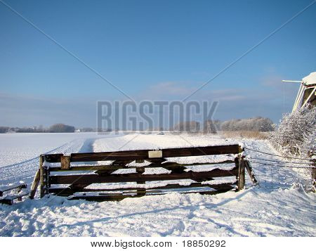 typical Dutch winter landscape
