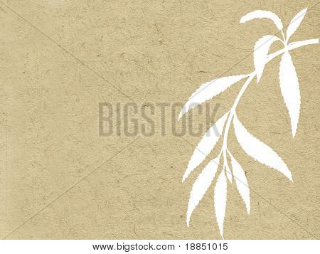 branch osier on grunge background