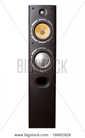 Big hi-fi speaker isolated on white