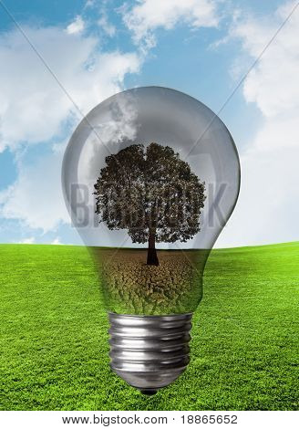 Concept image about power consumption and the nature