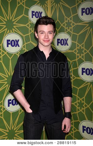 LOS ANGELES - JAN 8:  Chris Colfer arrives at the Fox TCA Party - Winter 2012 at Castle Green on January 8, 2012 in Pasadena, CA