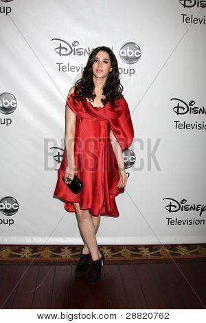 LOS ANGELES - JAN 10:  Erica Dasher arrives at the ABC TCA Party Winter 2012 at Langham Huntington Hotel on January 10, 2012 in Pasadena, CA