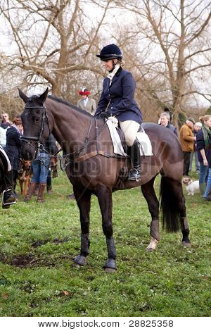 BERKSHIRE - DECEMBER 26: A rider straddles her horse at the Stanford Dingley Boxing Day Hunt on December 26, 2011 in Berkshire.