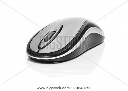 eine Computer-Maus auf weißem Hintergrund