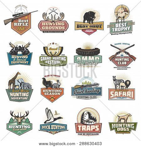 Hunting Sport Icons Safari Equipment