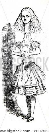 """Alicia en el país de las maravillas. Grabado por John Tenniel (Reino Unido, 1872). Ilustración del libro """""""" Alic"""