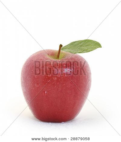 Red apple and white background