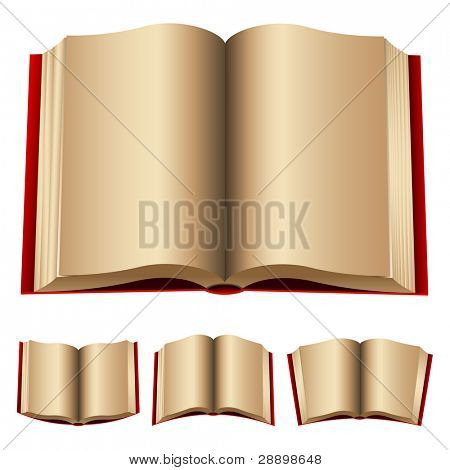 open red books isolated on a white background