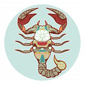 stock photo of scorpio  - Zodiac signs  - JPG