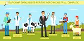 Flat Banner Search Specialist For The Agro Industrial Complex. Livestock Consultant Food Processing  poster