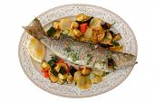 Fried sea bass with baked vegetables shot from above, Italian dish, isolated on white background poster