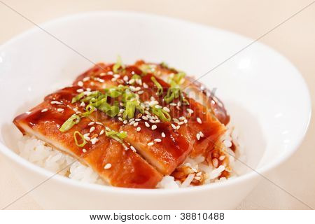 eel on rice,unaju, japanese unagi cuisine