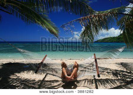Relaxing Hammock In Fiji Islands