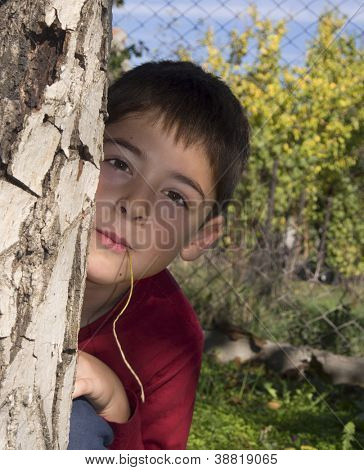 portrait of a boy in the nature