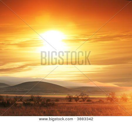 Hills On Sunset