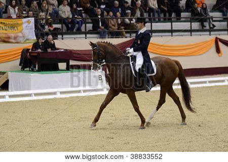 KAPOSVAR, HUNGARY - OCTOBER 14: Gabor Nemeth and his horse (Le Baldi) in action at the Dressage World Cup Competition October 14, 2012 in Kaposvar, Hungary.