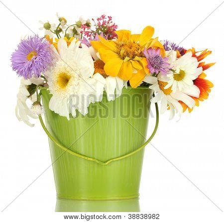 lindo buquê de flores silvestres brilhantes verde balde de metal, isolado no branco