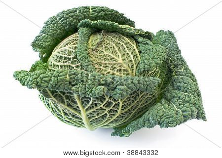 Kale Vegetable