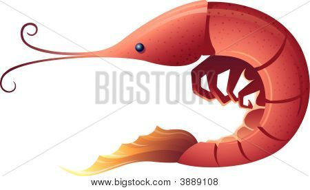 Shrimp.Eps