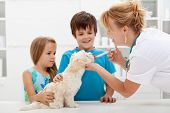 stock photo of fluffy puppy  - Kids with their pet at the veterinary doctor  - JPG