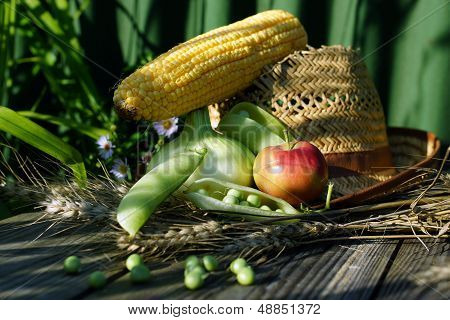 onion, apple, corn cob and pod peas