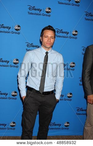 LOS ANGELES - AUG 4:  Seamus Dever arrives at the ABC Summer 2013 TCA Party at the Beverly Hilton Hotel on August 4, 2013 in Beverly Hills, CA