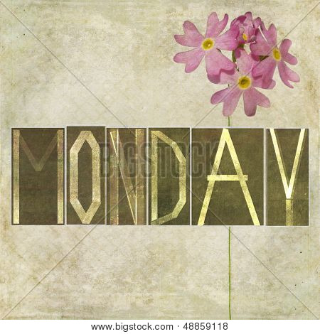 "Earthy texture background and design element depicting the word ""Monday"""