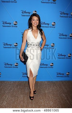 LOS ANGELES - AUG 4:  Ming-Na Wen arrives at the ABC Summer 2013 TCA Party at the Beverly Hilton Hotel on August 4, 2013 in Beverly Hills, CA