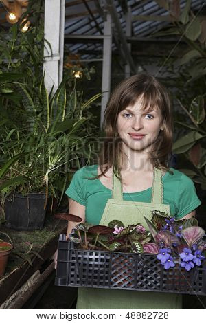 Portrait of beautiful botanist carrying crate full of flower plants at greenhouse