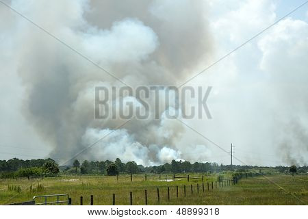 Open Burning Or Wildfire