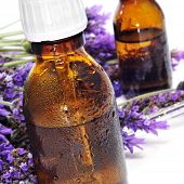 closeup of some dropper bottles with natural remedies and a pile of lavender flowers on a white back