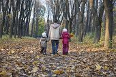 image of three sisters  - Full length rear view of mother and children walking in the park - JPG