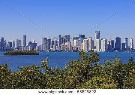 Famous View Miami