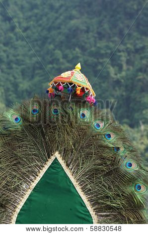 Thaipusam kavadi decorated with peacock feathers