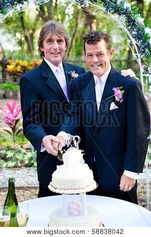 Handsome gay couple cutting the cake at their wedding reception.