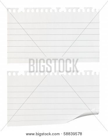 Torn Pieces Of Note Paper