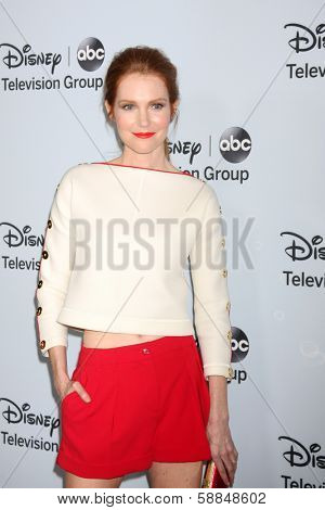 LOS ANGELES - JAN 17:  Darby Stanchfield at the Disney-ABC Television Group 2014 Winter Press Tour Party Arrivals at The Langham Huntington on January 17, 2014 in Pasadena, CA