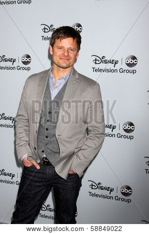 LOS ANGELES - JAN 17:  Steve Zahn at the Disney-ABC Television Group 2014 Winter Press Tour Party Arrivals at The Langham Huntington on January 17, 2014 in Pasadena, CA