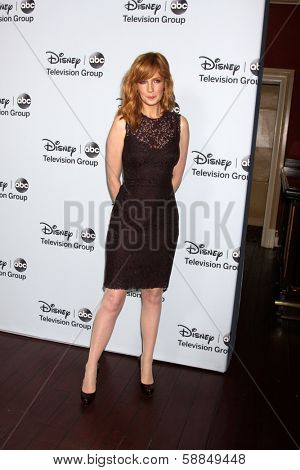 LOS ANGELES - JAN 17:  Kelly Reilly at the Disney-ABC Television Group 2014 Winter Press Tour Party Arrivals at The Langham Huntington on January 17, 2014 in Pasadena, CA