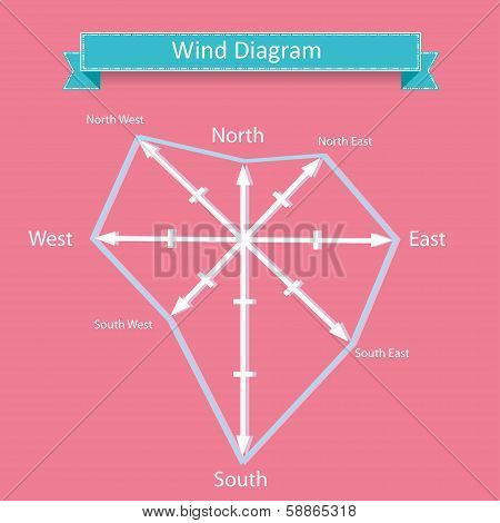 wind rose diagram vector for infographics