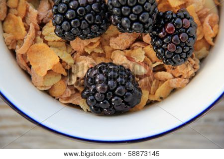 Bran cereal and blackberries