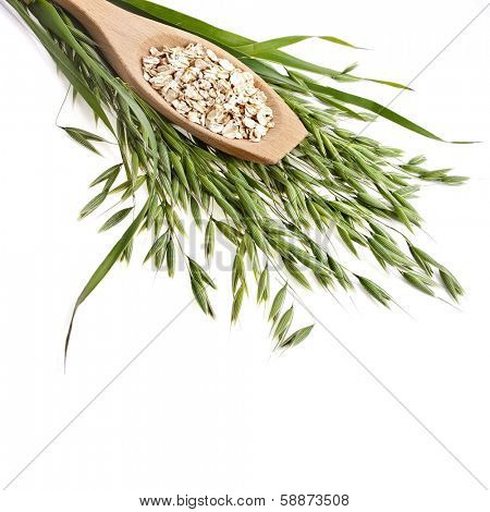 oat seeds flake close up in wooden spoon surface texture isolated on white background