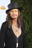 LOS ANGELES - JAN 14:  Steven Tyler at the 50th Sports Illustrated Swimsuit Issue at Dolby Theatre o