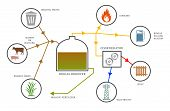 picture of biogas  - Graphical representation of the process of generating biogas - JPG